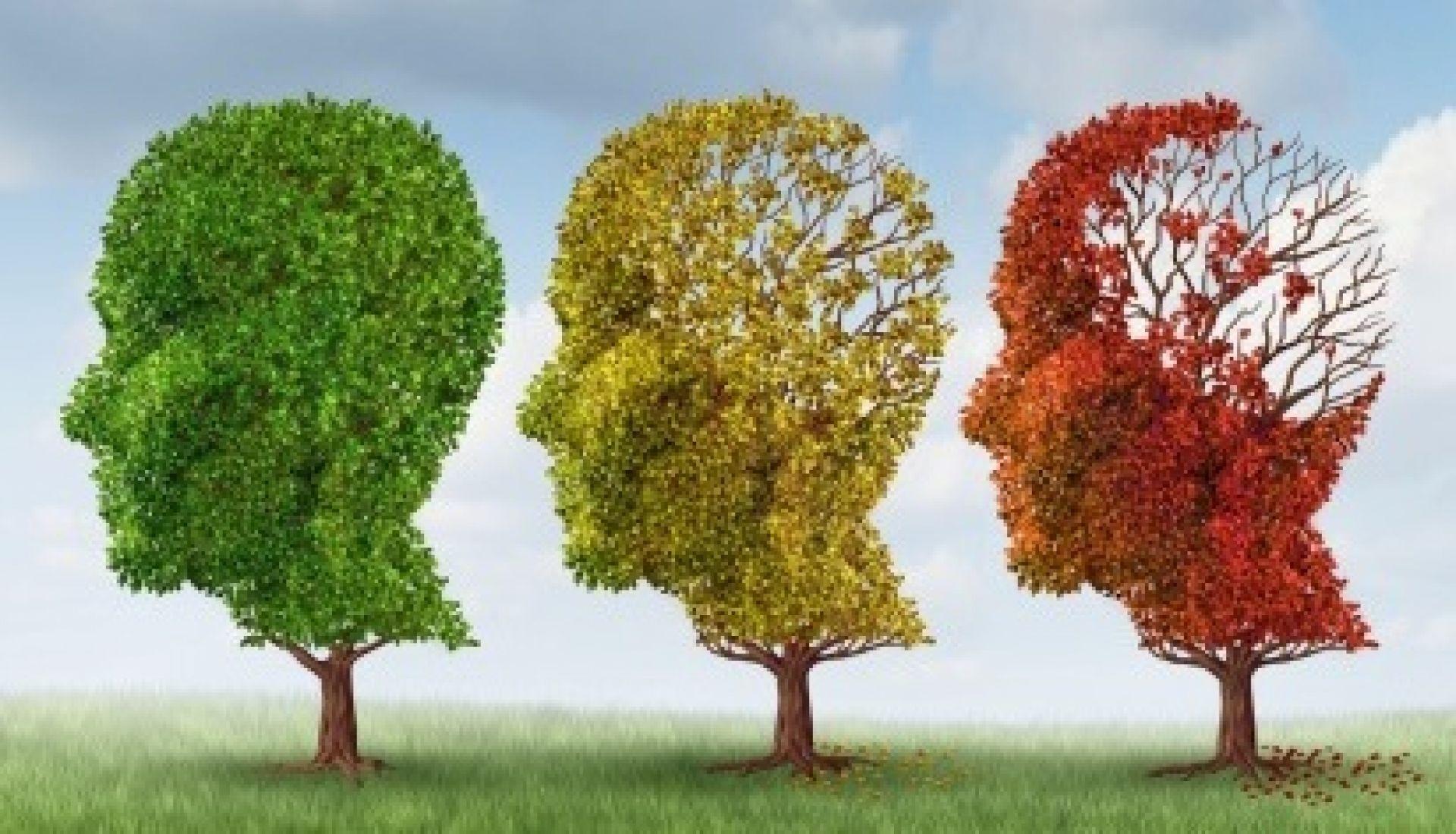 dementia-image-web_2-crop.jpg